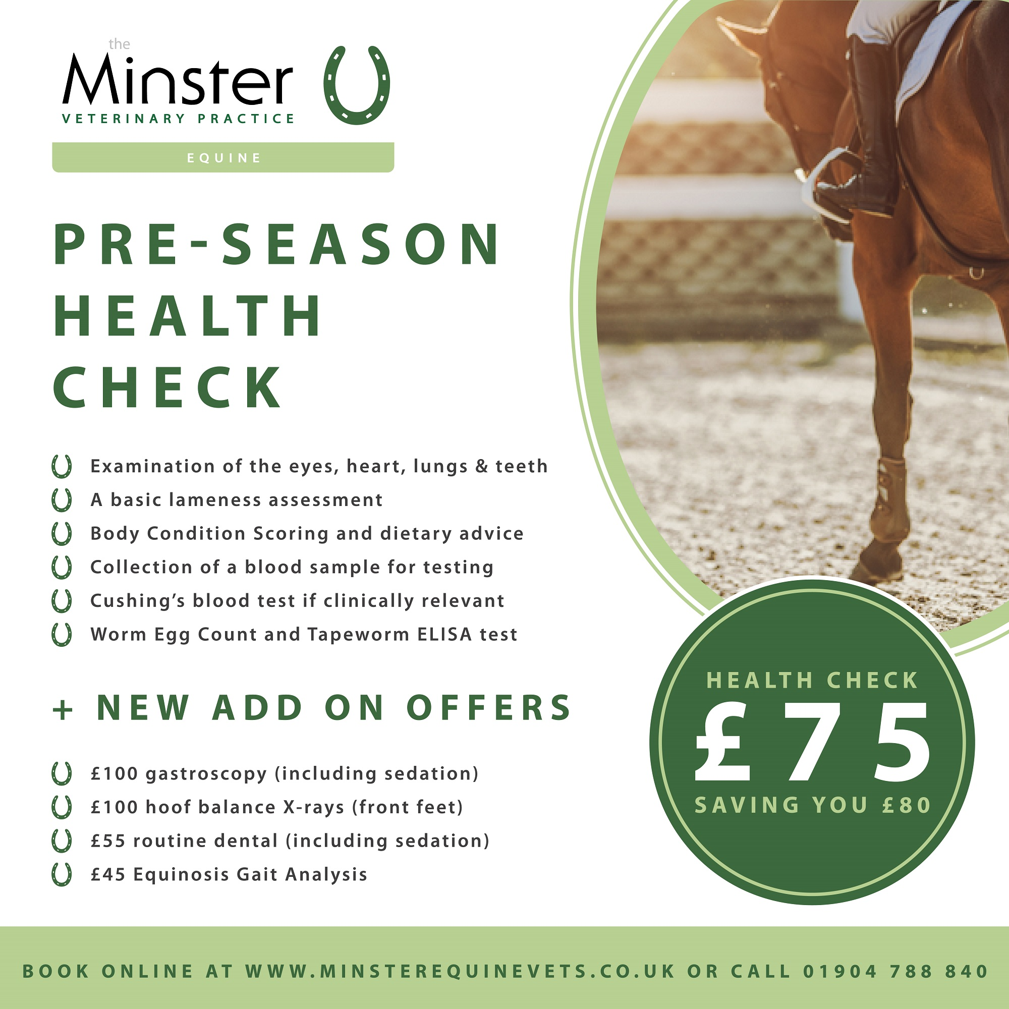 Pre-season Health Checks